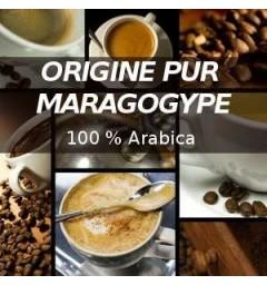 Maragogype coffee capsules for Nespresso ® compatible
