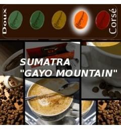 Café SUMATRA GAYO MOUNTAIN pour capsules compatibles Nespresso